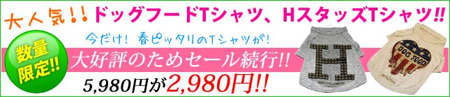 Hスタッズ・ドッグフード Tシャツ 4000円オフ!
