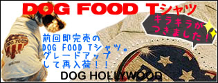 DOG FOOD Tシャツ[DOG HOLLYWOOD」