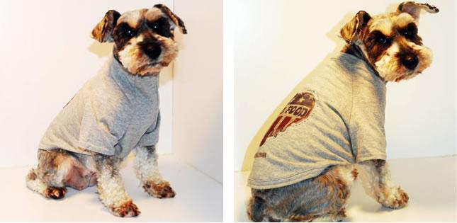 犬服のビックスマイル「Monkey Daze キュートスイムウェア」