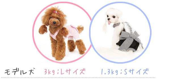 犬服のビックスマイル「Fresh Step Overall[puppy angel]」