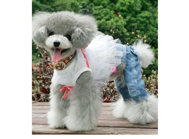 犬服のビックスマイル「ダブルリボンのコーディネイトデニム」