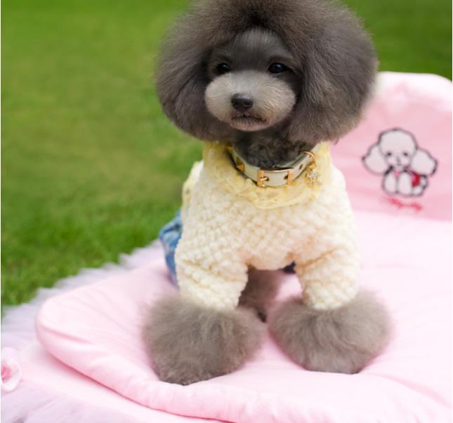犬服のビックスマイル「マシュマロコート」