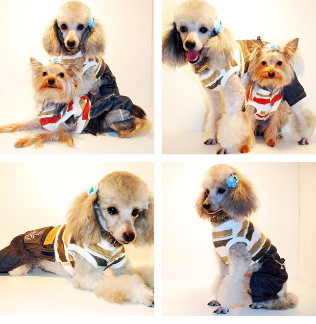 犬服のビックスマイル「[Butter] スカルクラウンのボーダーロンパース(つなぎ)」