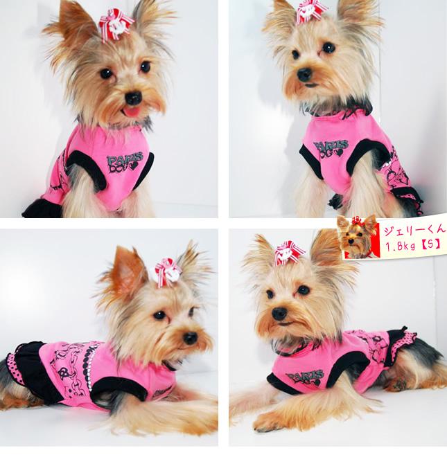 犬服のビックスマイル「PARISロマンティックワンピース」