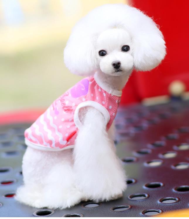 犬服のビックスマイル「クールメッシュリボンタンク」