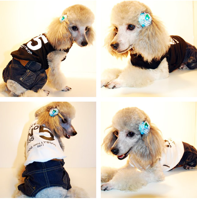 犬服のビックスマイル「[DOG HOLLYWOOD] LOVEBANKトレーナー!!」