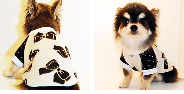 犬服のビックスマイル「リボンとハートドットのトップス」