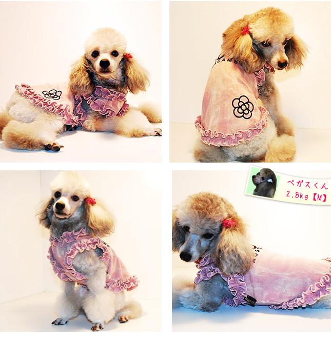 犬服のビックスマイル「プリンセスCOCO」