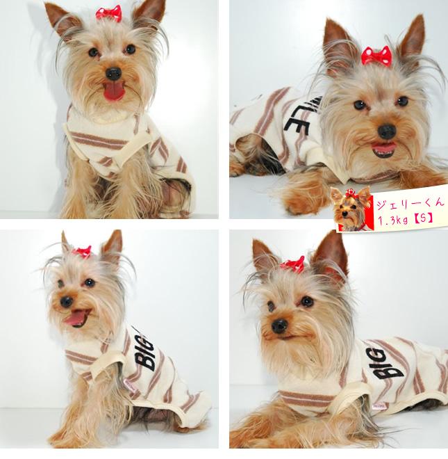犬服のビックスマイル「BigSmile パイル地スマイルロンパース」