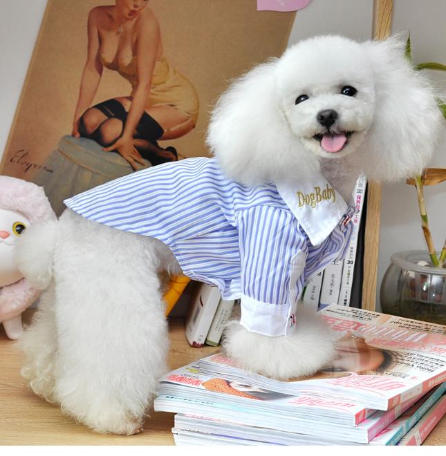 犬服のビックスマイル「マリンストライプ」