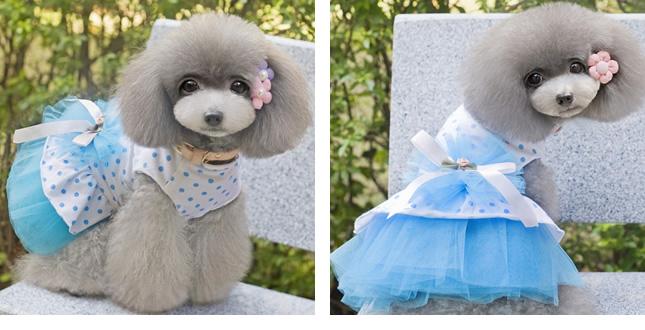 犬服のビックスマイル「ドットリボンのチュチュワンピ」