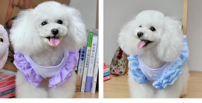 犬服のビックスマイル「ふんわりリボンワンピース」